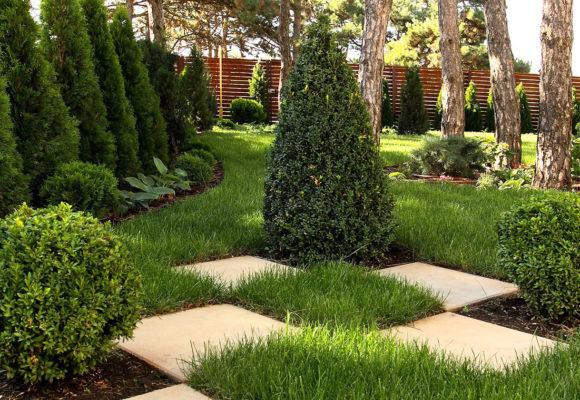 Вам непременно стоит заказать ландшафтный дизайн в компании «Магия сада»